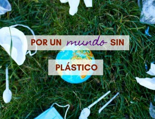 Por un Mundo sin Plástico